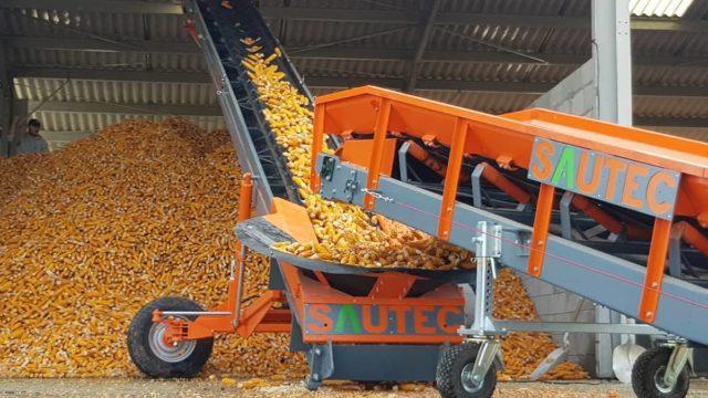SAUTEC : une solution de manutention douce pour le stockage du maïs en épi.
